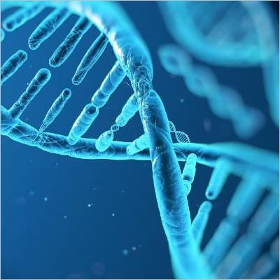 Il segreto dell'immortalità - Un'indagine sulla sequenza del DNA e sulla clonazione