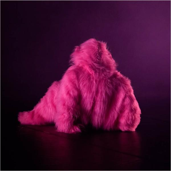 """Altre Danze: """"Il colore rosa di Aline Nari"""" di Aldes"""