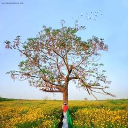 mahmoud-alkurd-we-breathe-freedom-free-gaza!-free-palestine!_08