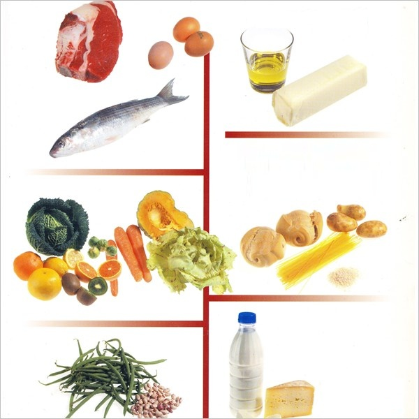Corso di alimenti e alimentazione (2 Volumi + Cd-ROM)