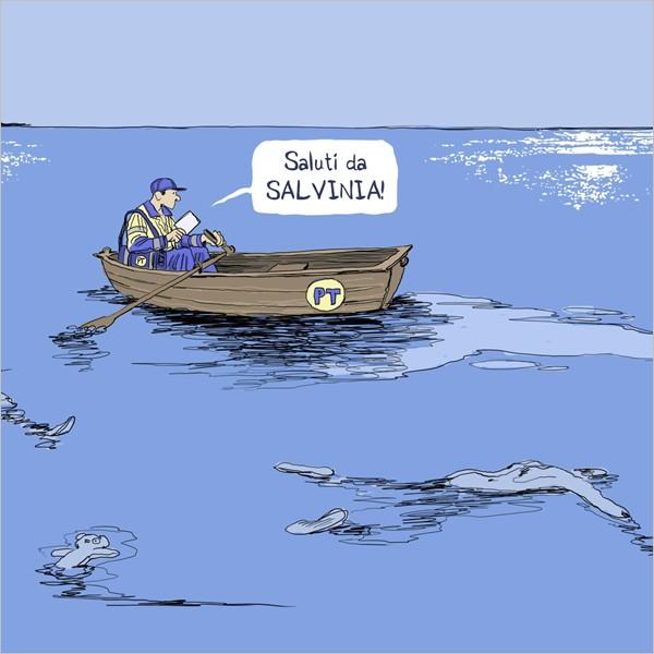 Vista Mare: vota le 10 cartoline più belle da consegnare a Salvini