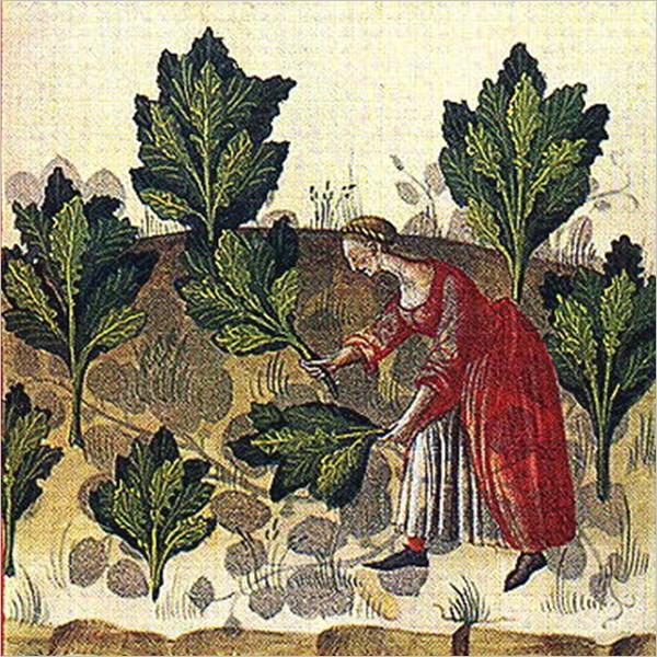 Sensi paralleli: dialoghi tra antico e moderno - Ciclo di incontri archeo-enogastronomici