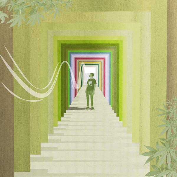 50 Shades of Green. Un'installazione d'arte ispirata e dedicata alla cultura cannabis