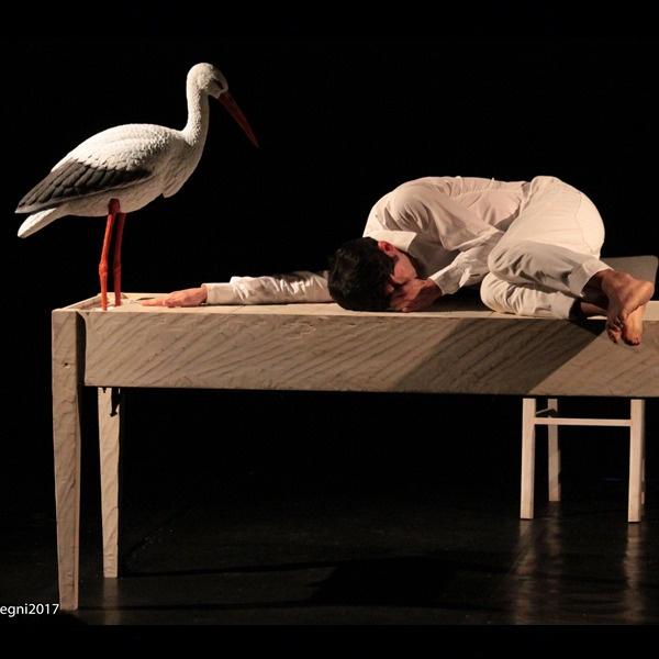 """Teatro Ragazzi: """"Il canto del coccodrillo"""""""