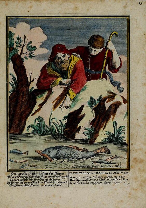 """I Proverbi Illustrati: """"Il pesce grosso mangia il minuto"""""""