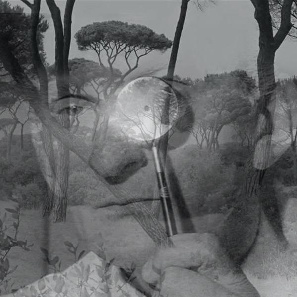 """""""Sagra"""" di Gino Lucente: tre serate tra performance, proiezioni e musica"""